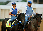 LOUISVILLE, KENTUCKY - APRIL 30: Local Hero, owned by e Five Racing Thoroughbreds, is led to the track by trainer by Steve Asmussen, before exercising in preparation for the Kentucky Derby at Churchill Downs on April 30, 2017 in Louisville, Kentucky. (Photo by Jon Durr/Eclipse Sportswire/Getty Images)