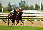 TORONTO, ONTARIO - JUNE 30. #8, Santa Monica (GB) wins the Grade II Dance Smartly Stakes with Jose Ortiz aboard for Trainer Chad Brown during the 159th Queen's Plate Festival at Woodbine Racetrack in Toronto, Ontario, Canada. (Photo by Kristin Leason/Eclipse Sportswire/Getty Images)
