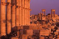 SIRIA - sito di Palmira(Tadmor) vista generale