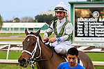January 16, 2016: Streets of Gold with Robby Albarado up returns to the winners circle after winning the Marie G. Krantz Memorial Stakes race at the Fairground race course in New Orleans Louisiana. Steve Dalmado/ESW/CSM