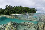 Russell Islands, Solomon Islands; an over under view of a shallow coral reef next to a tropical island on an overcast afternoon, with a stand-up paddle boarder moving past