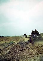 Chars canadiens au sud de Caen été 1944