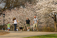 People enjoy a spring day in Freedom Park in Charlotte, NC