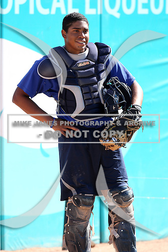 West Michigan Whitecaps catcher Luis Alberto Sanz during a game vs. the South Bend Silver Hawks at Fifth Third Field in Comstock Park, Michigan August 16, 2010.   West Michigan defeated South Bend 3-2.  Photo By Mike Janes/Four Seam Images