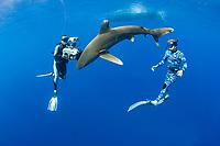 Scubazoo cameraman Jason Isley films Jimmy Hall with oceanic whitetip shark, Carcharhinus longimanus, off the Kona Coast of Hawaii Island (the Big Island), Hawaiian Islands (Central Pacific Ocean)