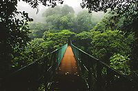 Monteverde Cloud Forest, Costa Rica