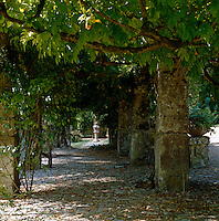 In this mature garden the eye is led along a mellow cobbled walkway under an ancient stone pergola to a stone lantern at the far end