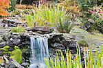 Waterfall and Moon Bridge in Private Garden.  Private garden professionally landscaped.