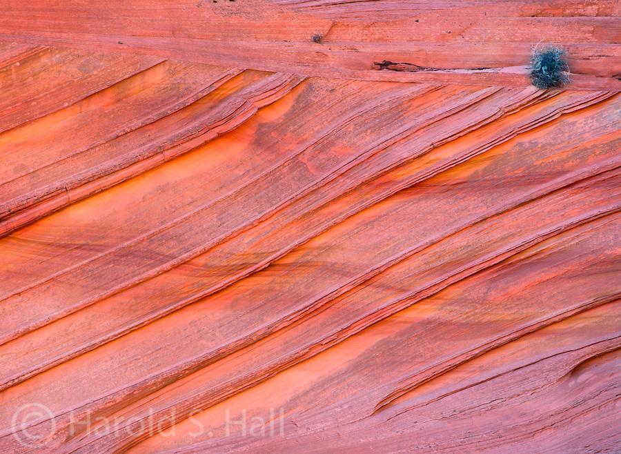 Orange and red colored sandstone rocks of the Vermillion Cliffs in Arizona.