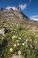 Arrigetch Peaks, Gates of the Arctic National Park, Alaska