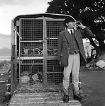 The Blencathra Foxhounds.  Barry Todhunter calls in missing hounds at the end of the day's hunt. Near Braithwaite, Cumbria.<br />