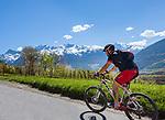 Italy, South Tyrol (Trentino - Alto Adige), Val Venosta, above Sluderno: Mountainbiker and Ortler Alps | Italien, Suedtirol (Trentino - Alto Adige), Vinschgau, oberhalb Schluderns: Mountainbiker und Ortler-Alpen