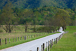 Great Smoky Mts. National Park, TN/NC<br /> Wood fence posts line Hyatt lane in Cades cove with the forested ridges of the Smoky Mountains as a background