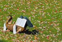 Canada, Montreal, McGill University, woman student reading on lawn