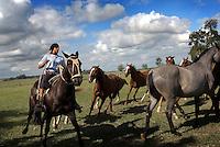 Female gauchos riding horses, Argentina.