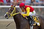 Willie Martinez aboard Trinniberg wins the The Woody Stephens Stakes at Belmont Park on Preakness Day in Elmont, NY on 06/09/12. (Ryan Lasek/ Eclipse Sportswire)