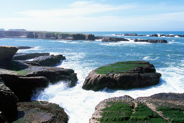 Coastline along Pacific West Coast near Point Arena Lighthouse, California, USA