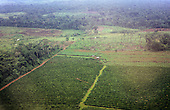 Amazon, Brazil. Aerial view of partly deforested land showing established agricultural crops and rainforest.