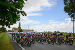 The peloton during Stage 5 of the 2021 Giro d'Italia, running 177km from Modena to Cattolica, Italy. 12th May 2021.  <br /> Picture: LaPresse/Fabio Ferrari | Cyclefile<br /> <br /> All photos usage must carry mandatory copyright credit (© Cyclefile | LaPresse/Fabio Ferrari)