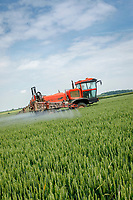 Spraying wheat T3 - Lincolnshire, June