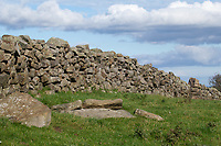 6.10.2020 Dry stone walls on the North Yorkshire Moors<br /> ©Tim Scrivener Photographer 07850 303986<br />      ....Covering Agriculture In The