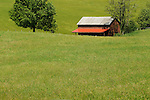 Barn on Route 19, West Virginia.