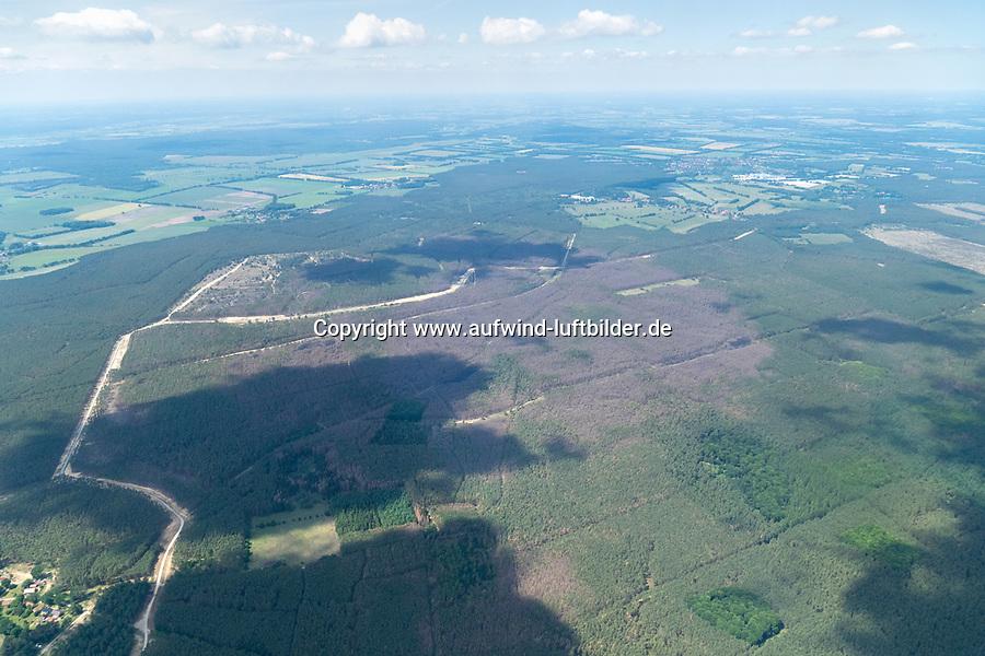 Waldschäden im Wald von Lübtheen: EUROPA, DEUTSCHLAND, MECKLENBURG- VORPOMMERN 16.06.2020 Waldschäden im Wald von Lübtheen