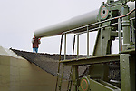Looking down a gun barrel.  Fort Casey State Park, Whibey Island, WA occupies the site of former navel gun installations fortifying Admiralty Inlet and Puget Sound. Olympic Peninsula