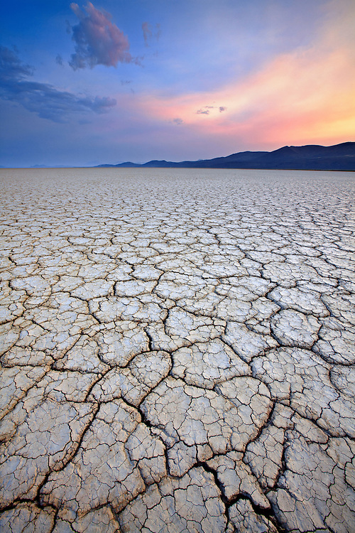 Cracked dried mud on the Alvord Desert playa in southeastern Oregon, USA