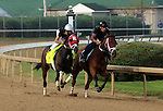 April 18, 2015 Kentucky Derby and Oaks contenders at Churchill Downs. International Star works 5F in 1:01.8 with rider Miguel Mena in company with Dreams Cut Short.  Owner Ken and Sarah Ramsey, trainer Mike Maker. By Fusaichi Pegasus x Parlez (French Deputy) ©Mary M. Meek/ESW/CSM