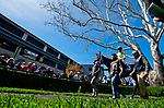 LEXINGTON, KENTUCKY - APRIL 07: A horse with its jockey is walked in the paddock before an undercard race on opening day at Keeneland Race Course on April 7, 2017 in Lexington, Kentucky. (Photo by Scott Serio/Eclipse Sportswire/Getty Images)