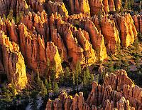 Close up view of pinnacles at Bryce Canyon National Park, UT