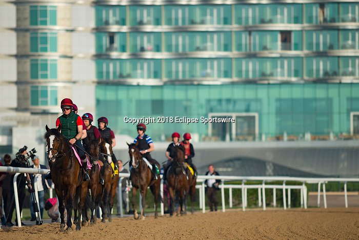 DUBAI,UNITED ARAB EMIRATES-MARCH 29: Aidan O'Brien's horses are walking with the background for Meydan Hotel at Meydan Racecourse on March 29,2018 in Dubai,United Arab Emirates (Photo by Kaz Ishida/Eclipse Sportswire/Getty Images)