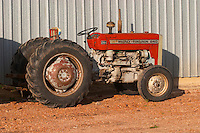 An old Massey Ferguson 240 tractor at the winery. Vinedos y Bodega Filgueira Winery, Cuchilla Verde, Canelones, Montevideo, Uruguay, South America