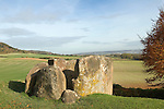 The Coldrum Stones a neolithic burial chamber Long Barrow. Trottiscliffe Kent UK.