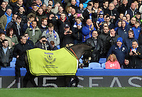 Pictured: One of the Grand National horse winners is paraded around the stadium at half time. Saturday 22 March 2014<br /> Re: Barclay's Premier League, Everton v Swansea City FC at Goodison Park, Liverpool, UK.