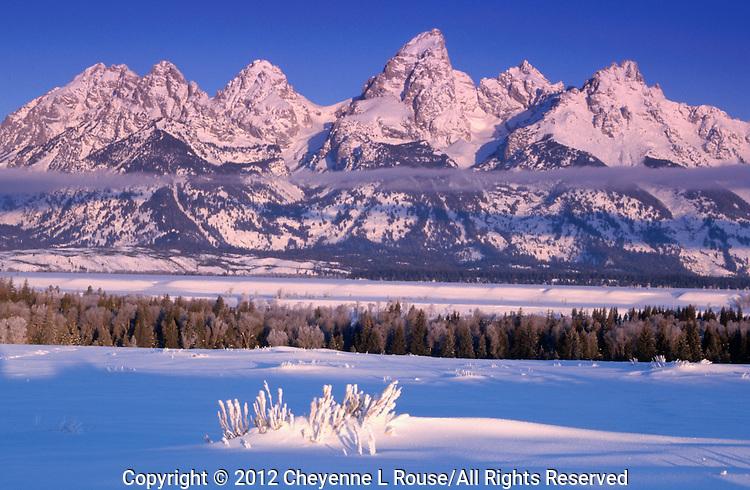 Teton Winter - Wyoming - Grand Teton NP