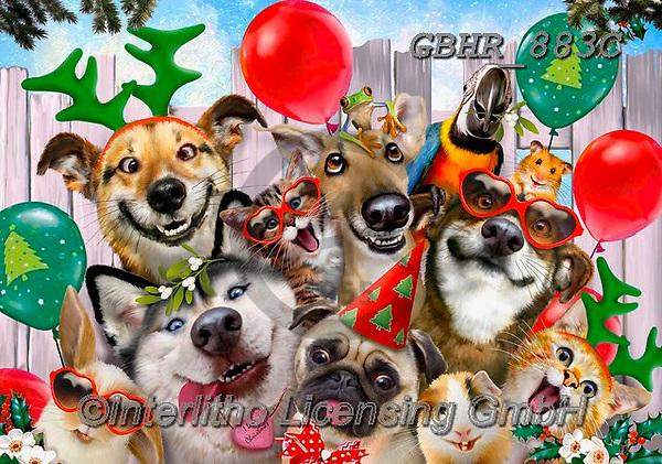 Howard, CHRISTMAS ANIMALS, WEIHNACHTEN TIERE, NAVIDAD ANIMALES, paintings+++++,GBHR883C,#xa# ,Selfies