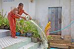 Monk Clearing Water From Rain Buildup, Phnom Sampeau Pagoda