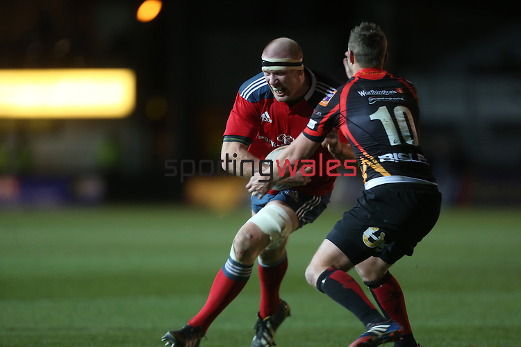 Munster lock Paul O'Connell charges at Dragons outside half Jason Tovey.<br /> RaboDirect Pro12<br /> Newport Gwent Dragons v Munster<br /> Rodney Parade - Newport<br /> 29.11.13<br /> ©Steve Pope-SPORTINGWALES