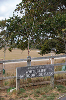 BNPS.co.uk (01202) 558833. <br /> Pic: CorinMesser/BNPS<br /> <br /> Pictured: Whitecliff Harbourside Park in Poole, Dorset. <br /> <br /> Police have launched an investigation into allegations a wealthy homeowner has killed two 'magnificent' oak trees because they blocked their sea views.<br /> <br /> The 70ft tall mature specimens have had holes drilled into their trunks and poison poured inside in a 'disgraceful' act of sabotage. <br /> <br /> The two trees stand on the edge of a recreation ground between Poole Harbour, Dorset, and a cluster of luxury homes that sell for between £2m to £3m.