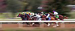 October 02, 2020:  The start of the Stoll Ogden Phoenix Stakes at Keenland Racecourse, in Lexington, Kentucky on October 02, 2020.  Evers/Eclipse Sportswire/CSM