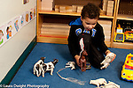 Education Preschool 3 year olds boy plyaing with toy horses and talking