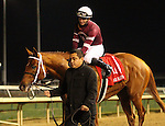 LOUISVILLE, KY -NOV 25: Gun Runner (Florent Geroux) wins the 142nd running of the Clark Handicap. Owner Winchell Thoroughbreds LLC (Ron Winchell) and Three Chimneys Farm (Zuleika B. Torrealba.) Trainer Steven M. Asmussen. By Candy Ride x Quiet Giant, by Giant's Causeway. (Photo by Mary M. Meek/Eclipse Sportswire/Getty Images)