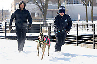 Greco, a four year old greyhound, takes off on a run Thursday, February 18, 2021, with Mike Melnechuk (left) and Xochitl Delgado on a section of the Razorback Greenway trail in Springdale. Check out nwaonline.com/210219Daily/ and nwadg.com/photos for a photo gallery.<br /> (NWA Democrat-Gazette/David Gottschalk)