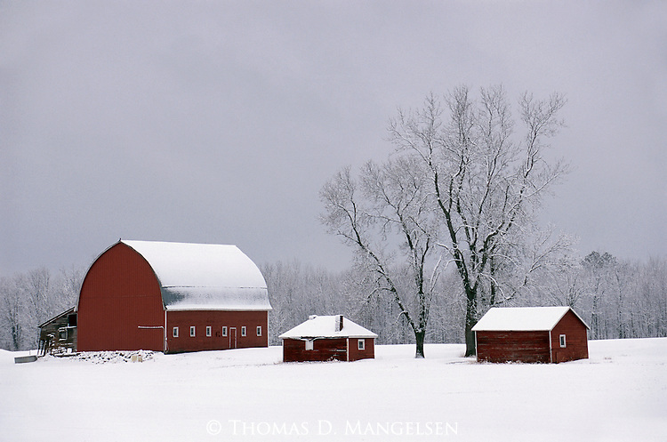 The hush of winter falls over a working farm in northern Minnesota.