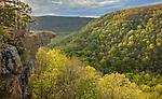 Ozark National Forest, AR: Hawksbill Crag in the Upper Buffalo Wilderness Area
