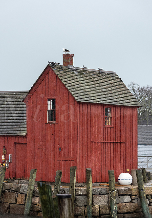Fishing shack, Motif number 1, Rockport, Massachusetts, USA.