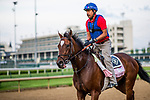 LOUISVILLE, KY - MAY 02: Coach Rocks at Churchill Downs on May 2, 2018 in Louisville, Kentucky. (Photo by Alex Evers/Eclipse Sportswire/Getty Images)