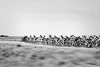 Peloton speeding along<br /> <br /> Ster ZLM Tour (2.1)<br /> Stage 2: Tholen > Hoogerheide (186.8km)